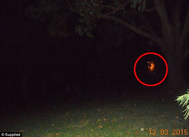 293D249E00000578-3105315-Toowoomba_Ghost_Chasers_believe_this_picture_taken_in_March_capt-a-2_1433159628754