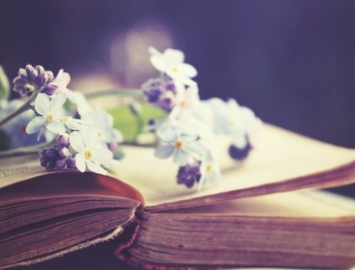 book-cute-flower-flowers-photo-photography-Favim.com-107587_large