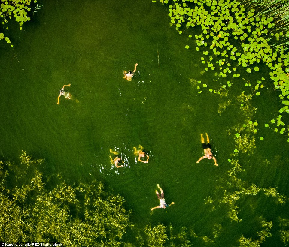 2ACC5BBD00000578-3173355-Swimmers_explore_the_vibrant_green_Lake_of_Elektrenai_Lithuania_-a-47_1437748383419