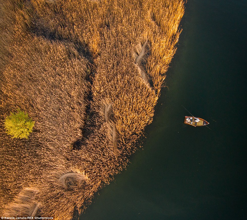 2ACC5C0000000578-3173355-Golden_glow_Fishermen_relax_out_on_the_lake_of_Elektrenai_Lithua-a-57_1437748383577