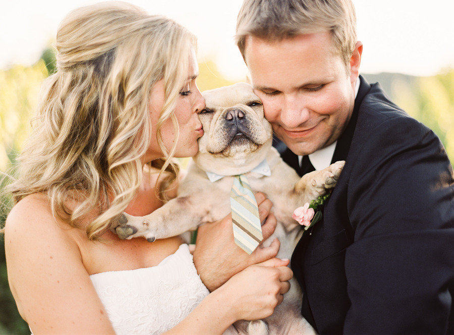 jordanmcbride.com-Dogs-in-Weddings-4-Jordan-McBride1