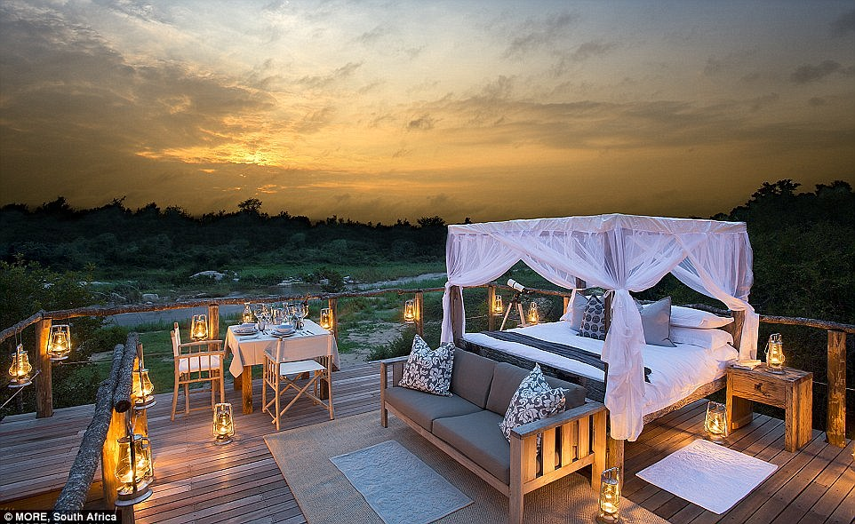 2D33545700000578-3265077-Located_in_the_Sabi_Sand_Game_Reserve_in_South_Africa_each_treeh-a-12_1444722189449