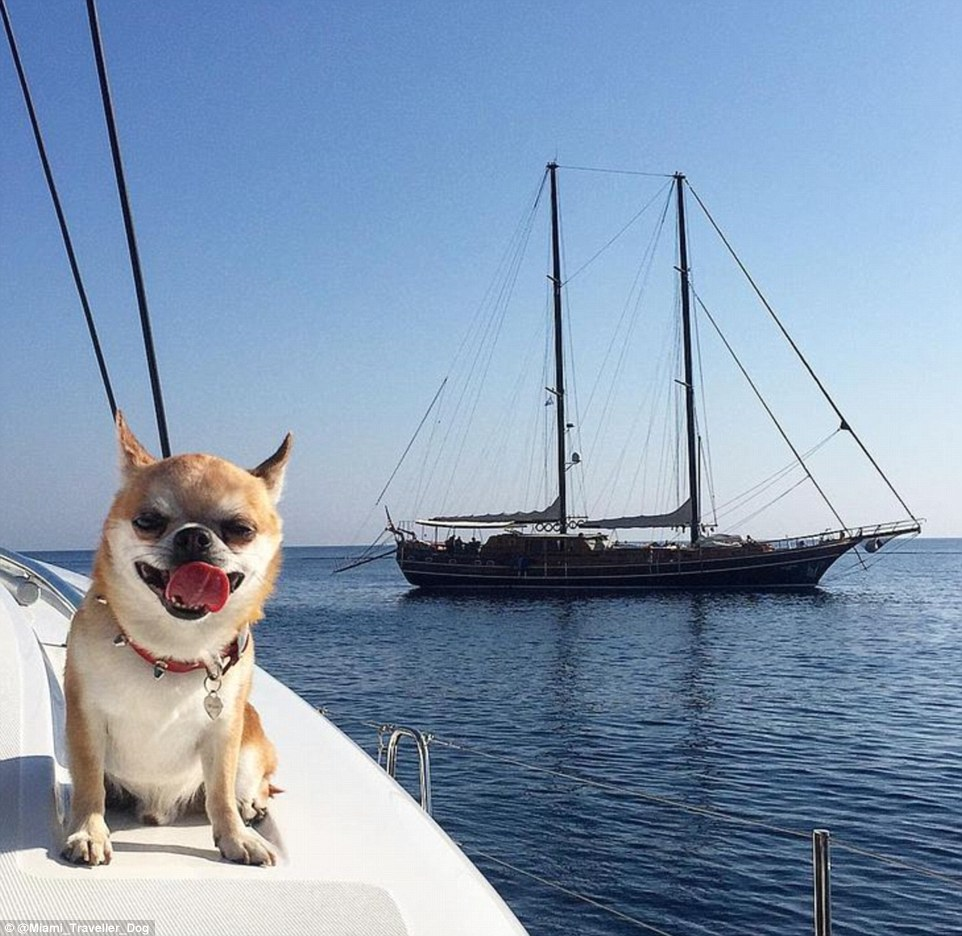 2DDD79C900000578-3293523-Yacht_life_Miami_enjoys_a_life_of_luxury_while_on_a_trip_to_Gree-m-69_1446041776276