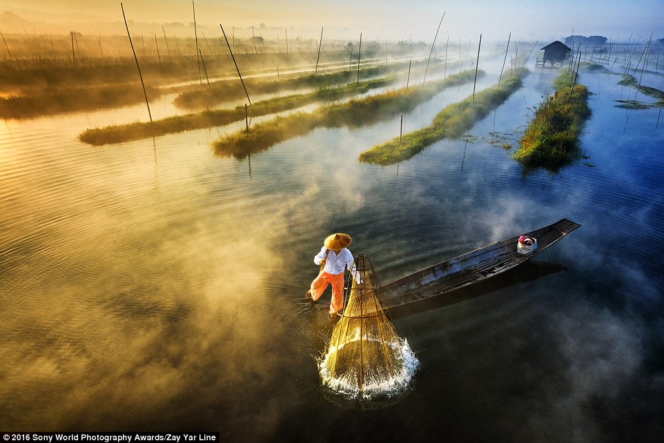2DF29E7300000578-3296769-Zay_Yar_Line_from_Burma_shared_this_image_of_a_fisherman_leg_row-a-1_1446221666962