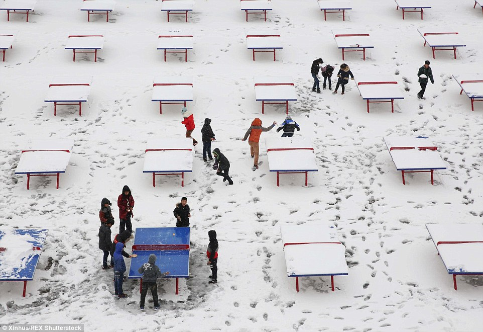 2ED338FA00000578-3335083-Nothing_is_stopped_them_Students_play_table_tennis_in_snow_at_a_-a-14_1448552590175