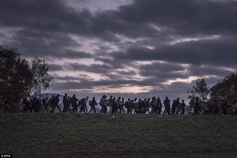 3157103100000578-3452659-The_picture_shows_migrants_walking_atop_a_dike_as_Slovenian_riot-a-27_1455813039756